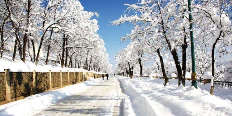 الشتاء في أربيجان