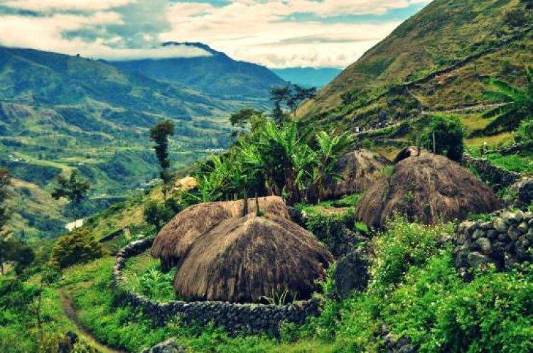 الطبيعة الجبلية والحياة البرية