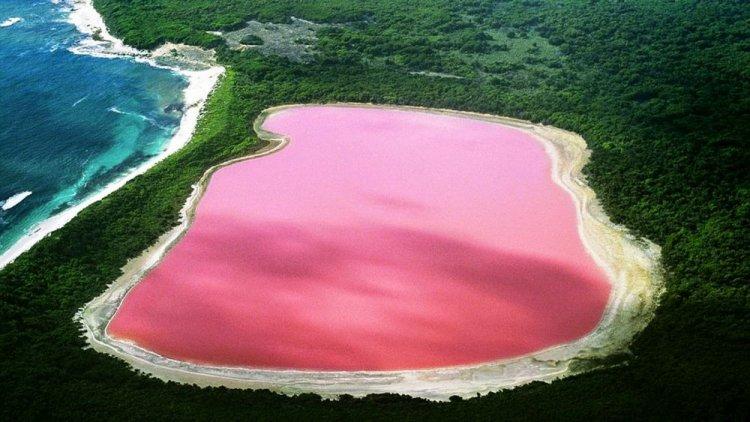 بحيرة هيلير الوردية