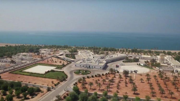 جزيرة دلما أبوظبي