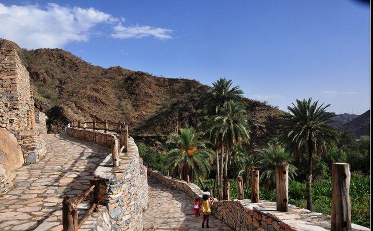 قرية ذي عين الأثرية في الباحة