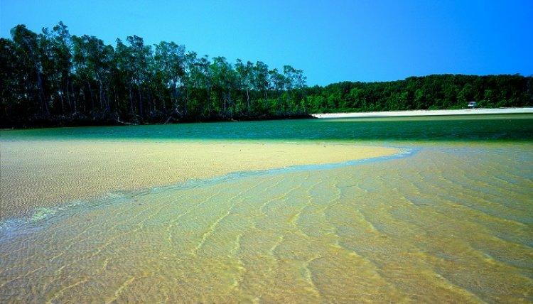 جزيرة ماراجو في البرازيل
