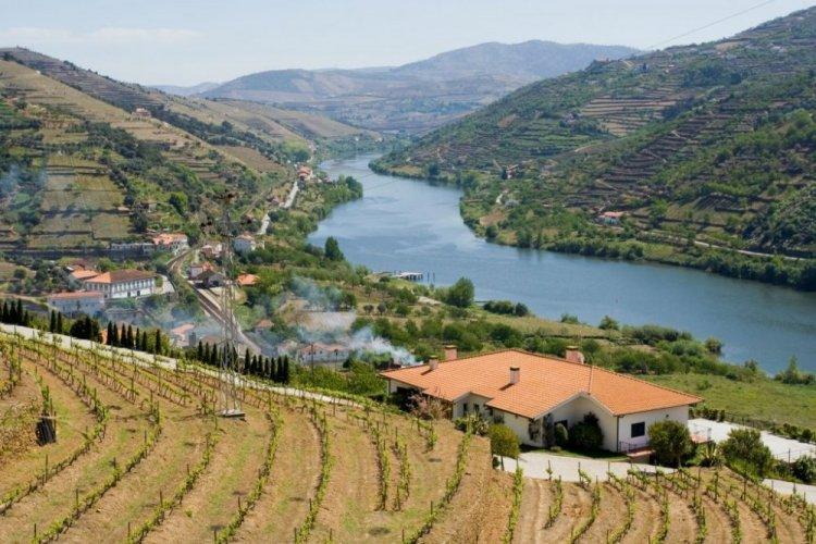 وادي دورو Douro River