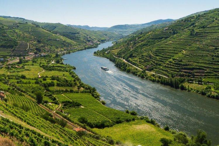 وادي دورو في البرتغال