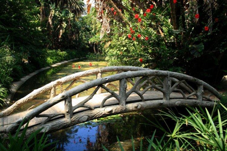 جسر صغير في حديقة الحامة