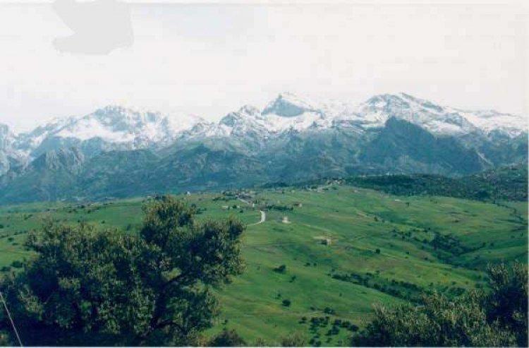 الحديقة الوطنية جرجرة بالجزائر
