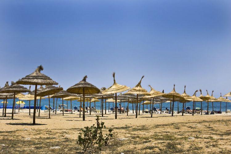 ياسمين الحمامات في تونس
