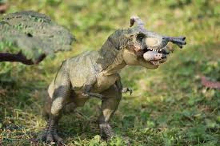 نموذج مصغر للحيوانات في حديقة نينغبو