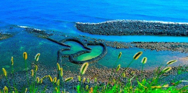كائنات مرعبه مخيفة في جزيرة فرموزا