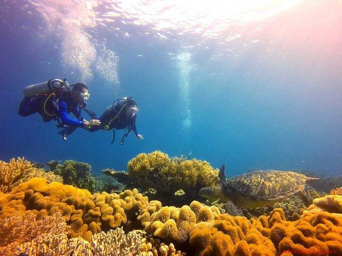 جولة في جزيرة نيجورس الفلبينية
