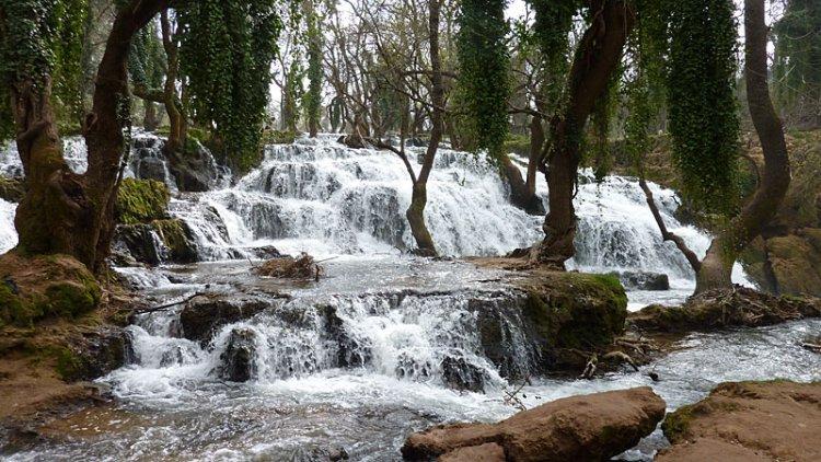 المنتزه الوطني إفران في المغرب
