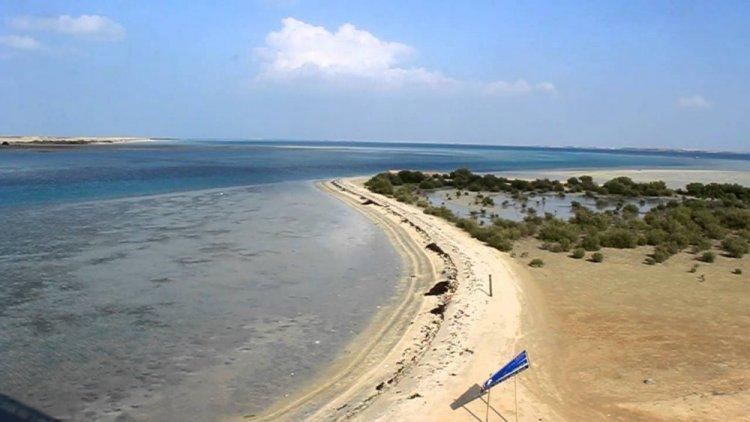 جزيرة-فرسان
