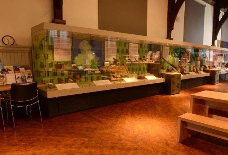 متحف الآثار في مكتبة القصر الأخضر في مدينةدورهام بالمملكة المتحدة