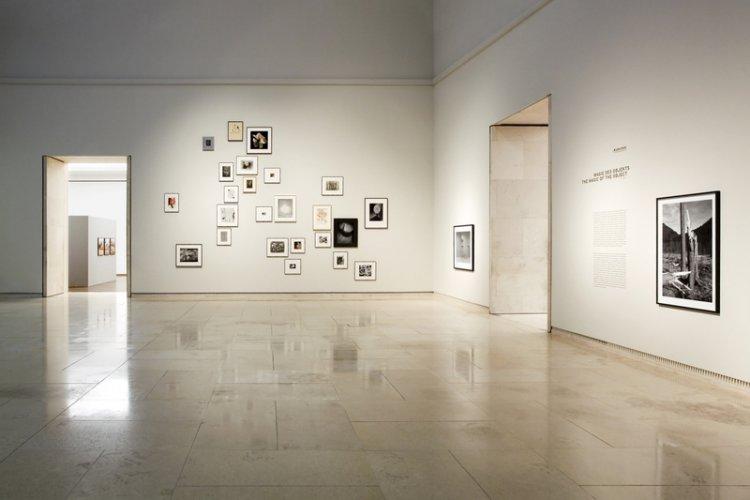 الاعمال الفنية علي جدران المتحف