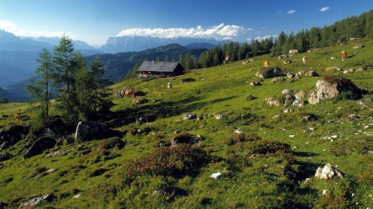 منتزه هوي تاورن الوطني في النمسا