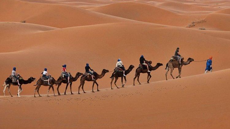 صحراء جايسالمير