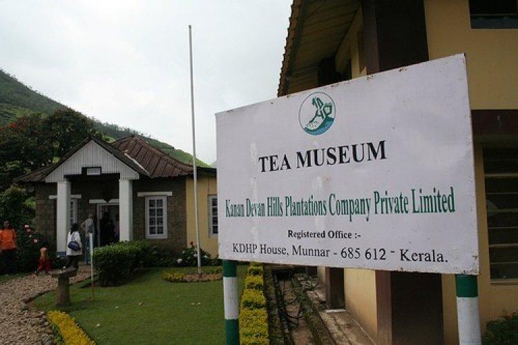 متحف الشاي