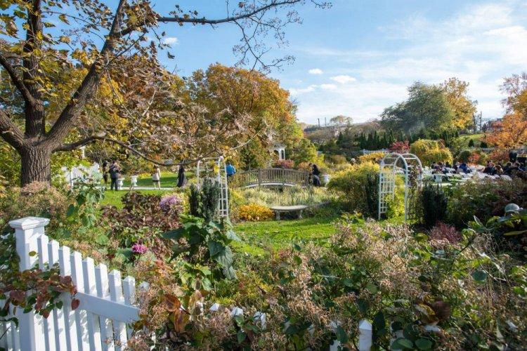 حديقة كوينز النباتية