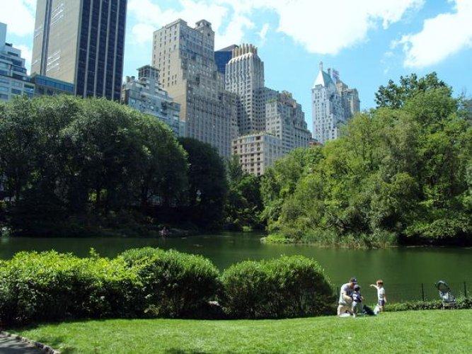 سنترال بارك في نيويورك