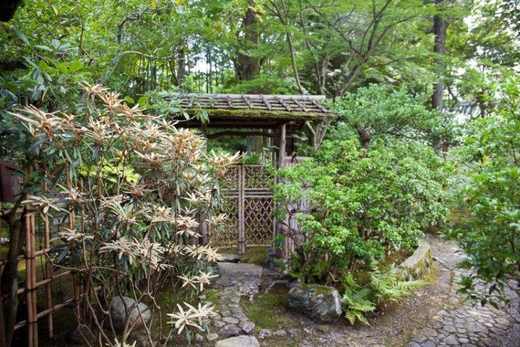 حديقة نارا في نارا باليابان
