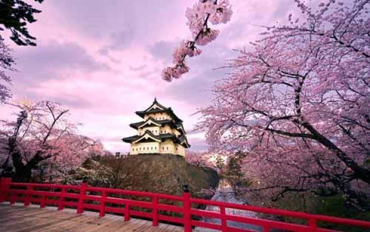 اليابان بلد التطور والتقدم المستمر