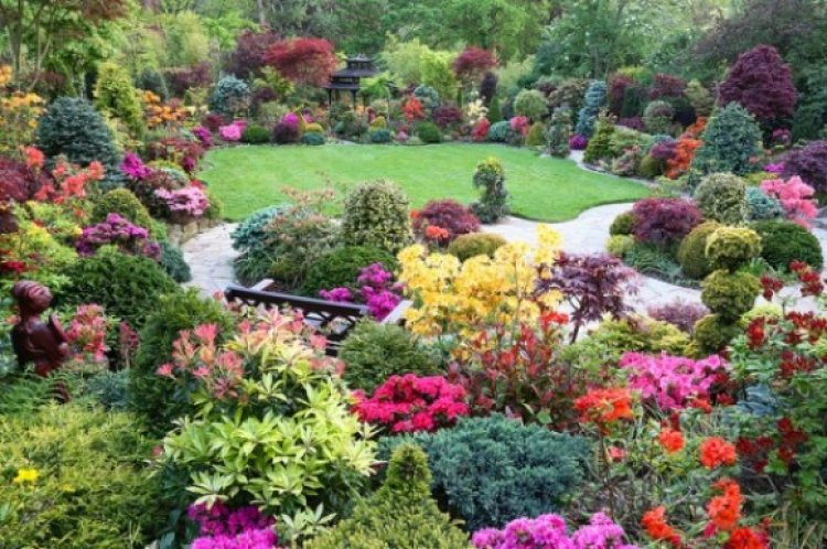 حديقة نيشينومارو في اليابان