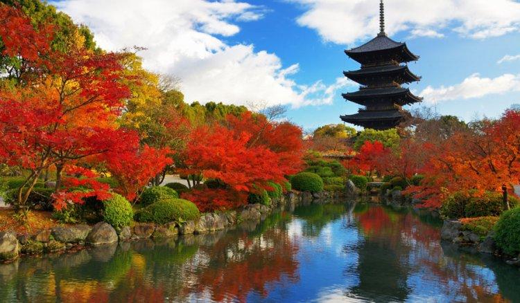 مدينة كيوتو باليابان