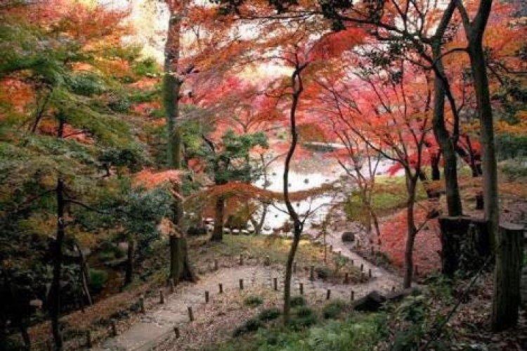 حديقة سانكين في يوكوهاما
