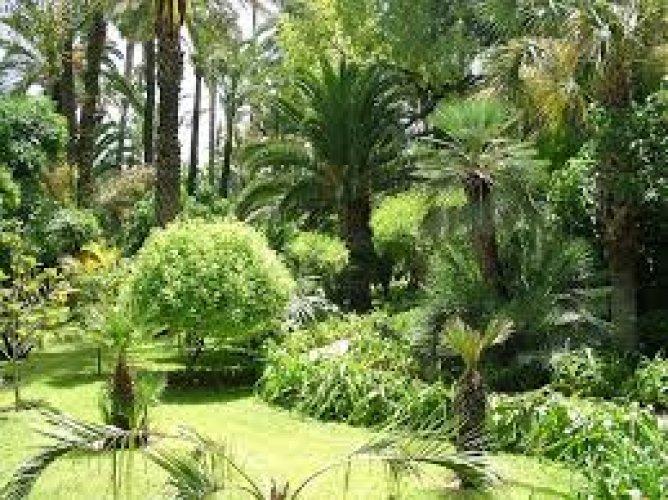 حديقة نيشينومارو في مدينة أوساكا
