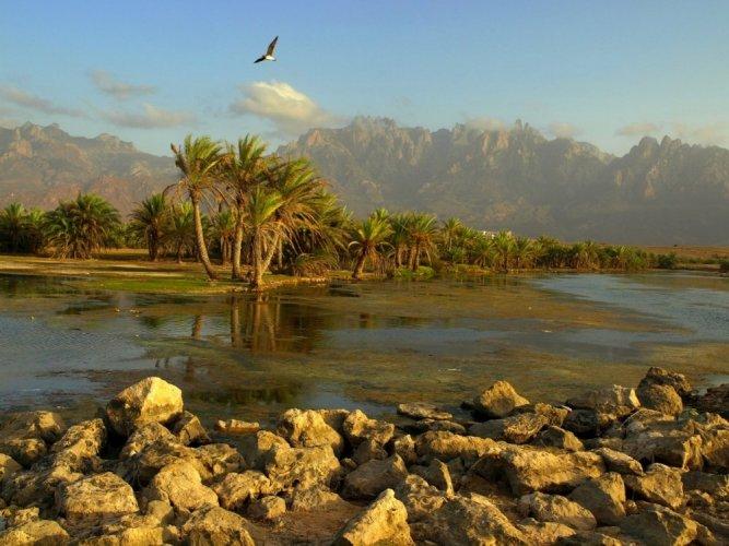 تاريخ ومعادن وجمال في جزيرة سقطري