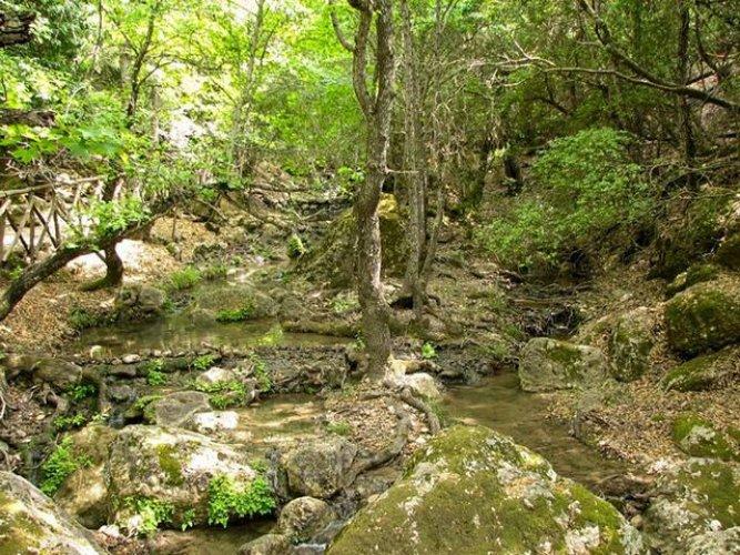 وادي الفراشات في جزيرة رودس