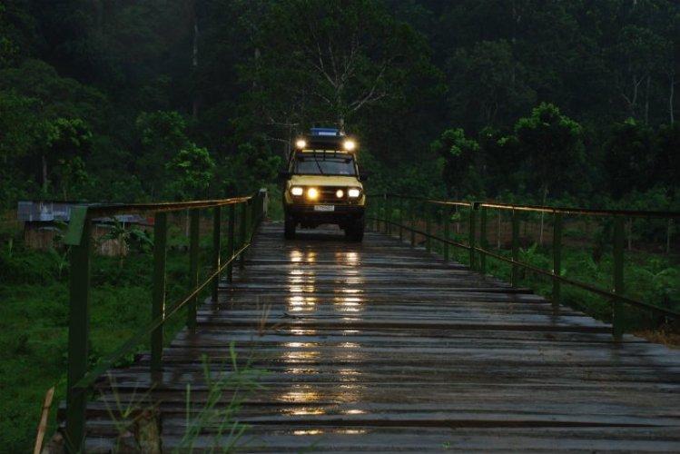الغابات في بانيوانجي