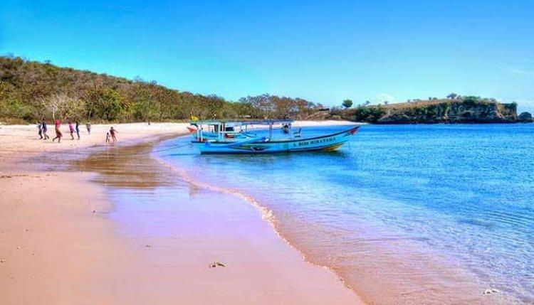 الشاطئ الوردي في جزيرة فلوريس