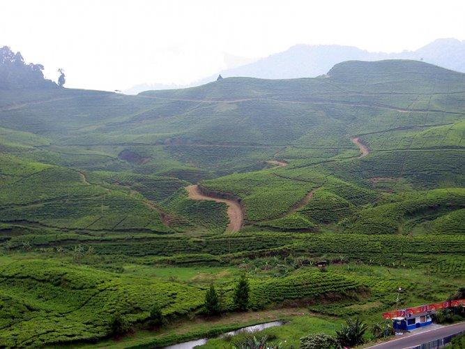 جبل بونشاك في إندونيسيا