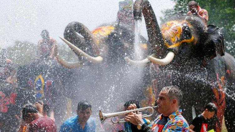 الفيلة والناس في مهرجان عيد الماء في تايلاند
