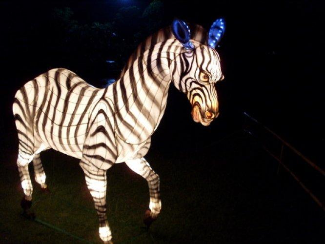 مصابيح على هيئة حيوانات في مهرجان المصابيح في تايلاند