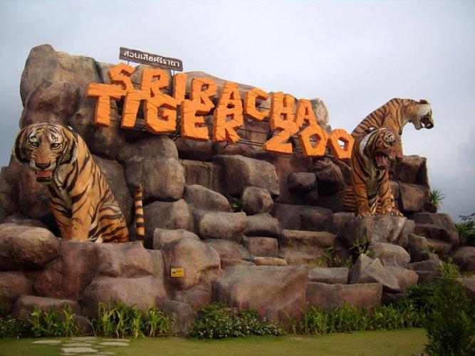 حديقة النمور في بتايا