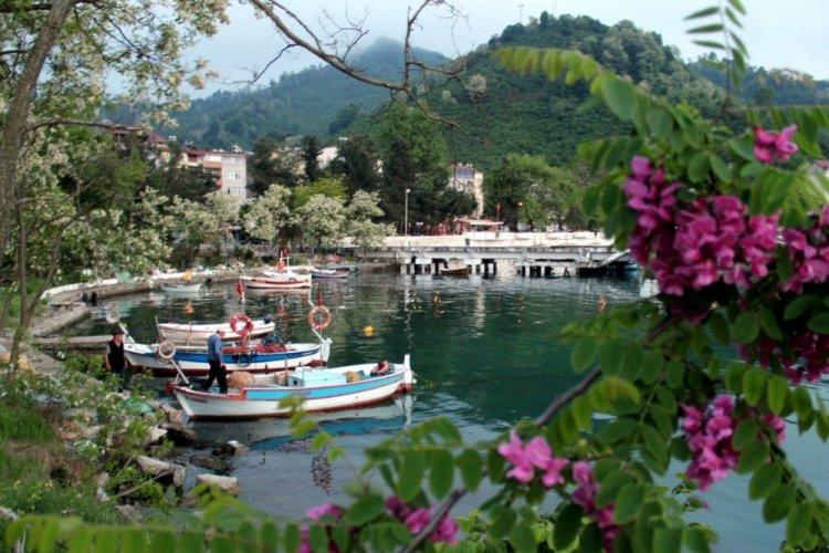 مدينة فاتسا في تركيا