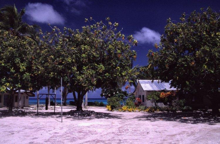 الطبيعة في جزيرة توفالو
