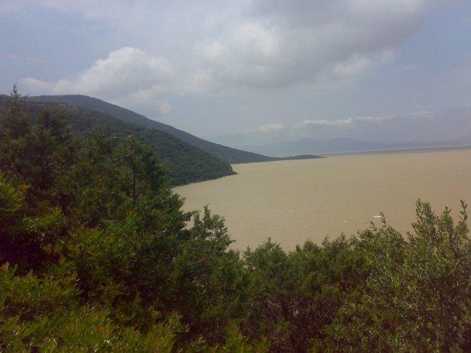 بحيرة إشكل في تونس