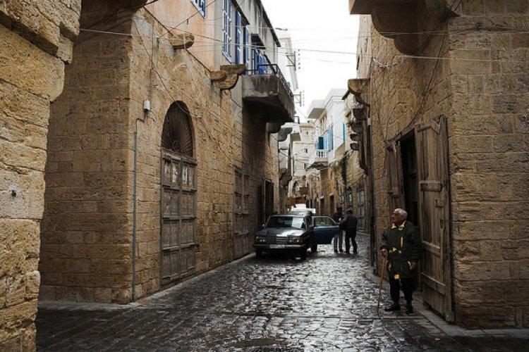شاحل جونيه في لبنان