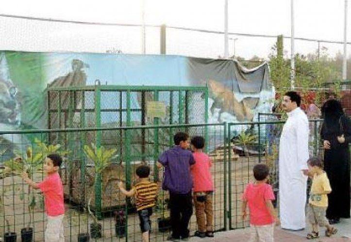 فيفا جاردن في جدة