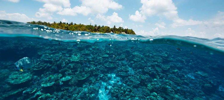 المياة الرائعة في جزر المالديف