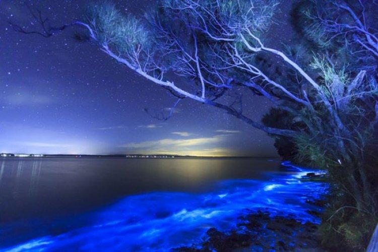شاطئ فادهو ظاهرة غريبة رائعة الجمال