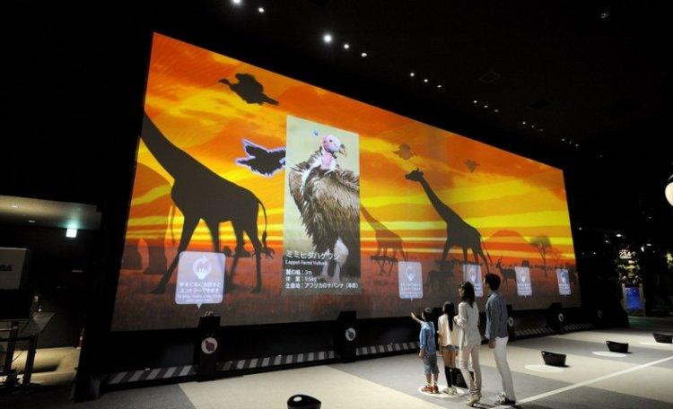 أوربي دبي متحف الطبيعة في دبي