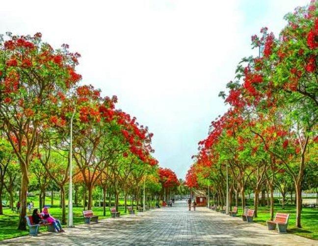 حديقة زعيبل في دبي