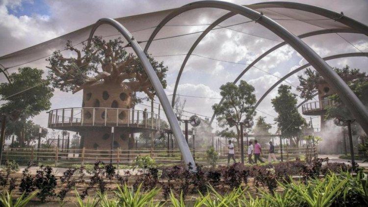 حديقة سفاري دبي من الداخل