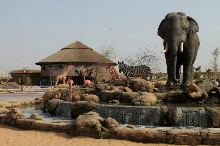 حيوانات في حديقة سفاري دبي