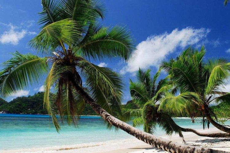 شواطئ جزيرة ماهي بالسيشل