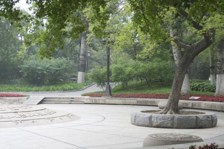 ممارسة رياضتي الجري والمشي داخل المسارات المخصصة في حديقة يويوان